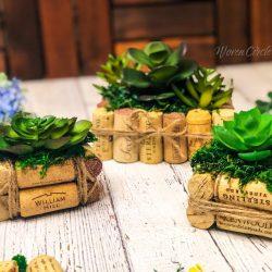 Wine cork planter, succulent set
