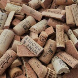 used-halves-of-wine-cork-for-crafts
